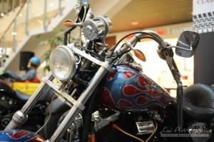 Harley Davidson Yokera